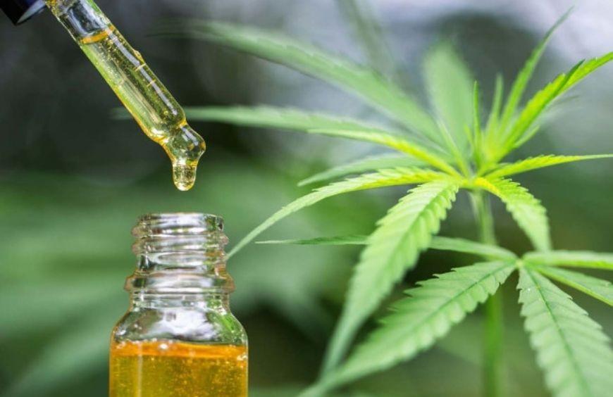Comment utiliser l'huile de CBD ?